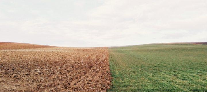 Diez buenas prácticas agrícolas para mitigar el cambio climático y la erosión