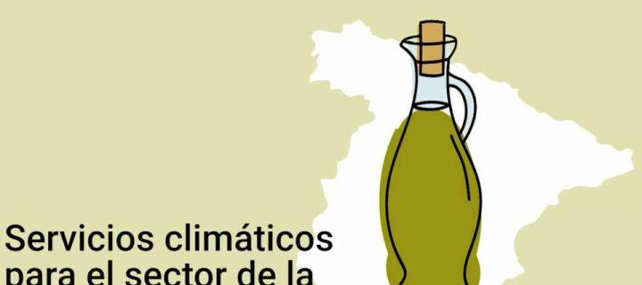 Muestran cómo el olivar puede afrontar el calentamiento global con predicciones climáticas