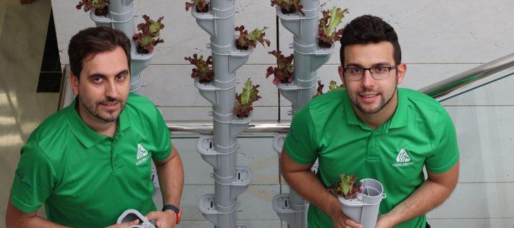La agricultura vertical en invernadero, una nueva apuesta para el agricultor sostenible