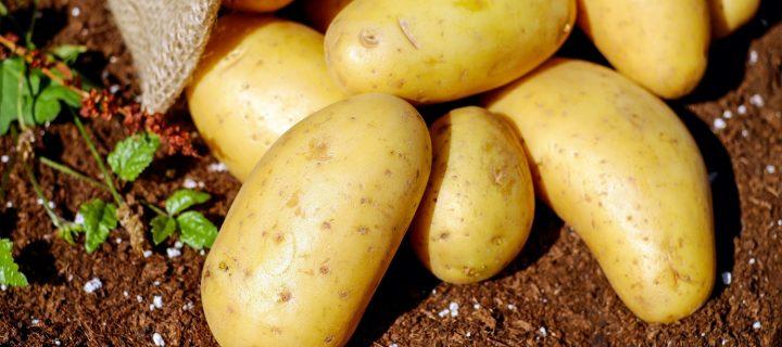 Herramientas de precisión para optimizar el uso de agua de riego de patata