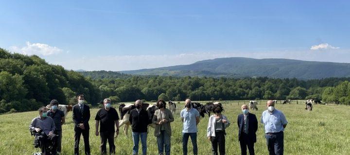Nuevo proyecto que combina pastoreo ecológico y empleo social