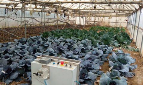 Efectos del uso de ozono como desinfectante en la fertilidad de los suelos