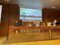 Nutrisan, el nuevo proyecto para el manejo sostenible de la nutrición del olivar